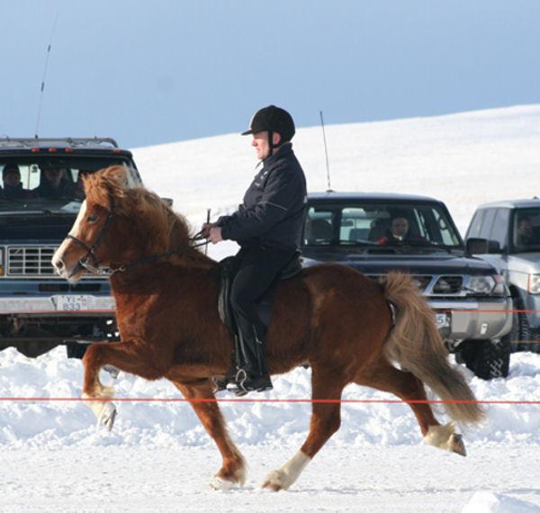 IS2001258160 Lotning fra Þúfu